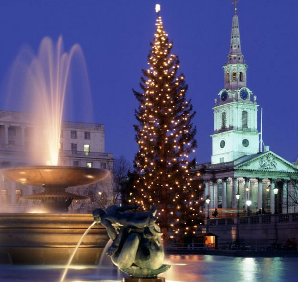 christmas tree in trafalgar square london