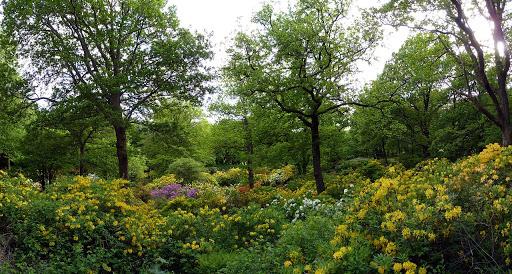 Gothenburg, Slottsskogen Park