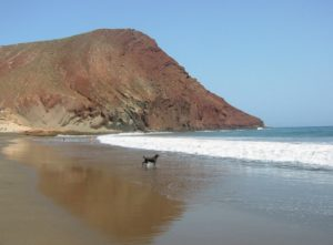 Playa de La Tejita,one of the best beaches in Tenerife island