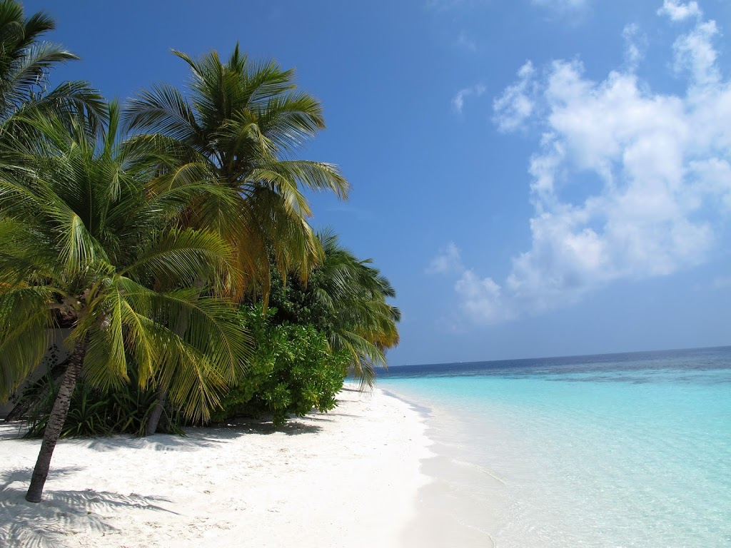Close Your Eyes And Imagine The Maldives Feel Heat Of Sun On Body Perceive Taste Exotic Fruits Their Sweetness Juice